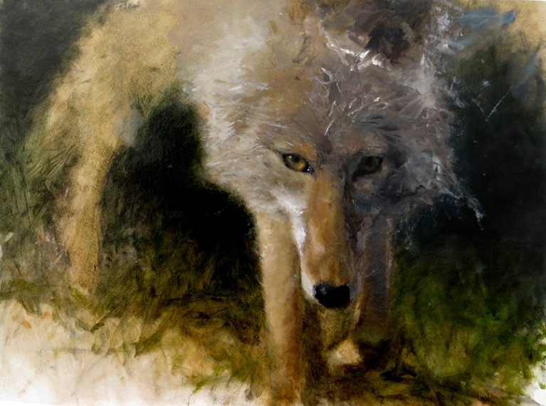 Coyote lisa pecore oil on paper mounted on panel, 18x24 sold