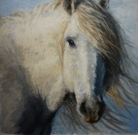 horse study lisa pecore oil on panel, 24x24