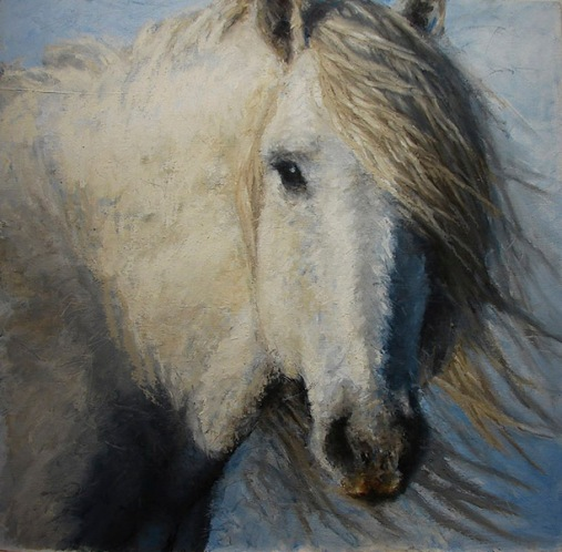 horse study lisa pecore oil on panel, 24x24 sold