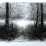 the meadow at bear den creek lisa pecore charcoal